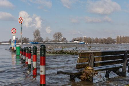 Rhein Hochwasser